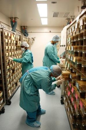 LARC Staff | Laboratory Animal Resource Center (LARC)